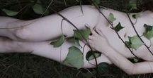 {empress. / upright: fertility, femininity, beauty, nature, abundance. reversed: creative block, dependence on others.