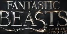 ϟFantastic Beasts And Where To Find Themϟ