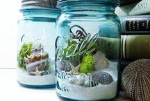 DIY: Plant - Terrarium