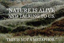 > art > nature : landscapes