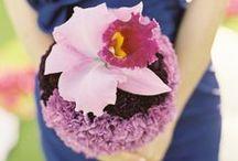 A Bouquet of Beautiful