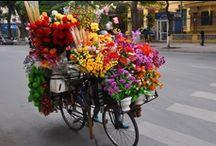 Flowers!