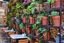 Celebrate Earth Day Every Day / At Le Pain Quotidien, we believe that every day should be Earth Day!   From the sourcing of organic ingredients to the use of reclaimed wood for our furniture, we strive to be sustainable in our business practices. We choose our farmers and producers with care so we know they share the same love, passion and commitment as we do. In serving our guests and partnering with our suppliers, we work towards fostering a sense of community in this hectic, fast-paced world.