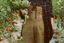 Allotment / Grow, produce and feast.