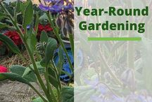 Gardening | Year-Round / Garden Year-Round is a hot topic... here are some great shares  to visit including greenhouses, hoop house, geodesic bio domes, and more.