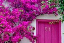 gate...doors....flowers....