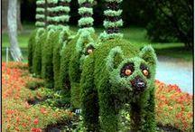 garden delights / by Lori Casey