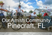 Pinecraft Amish Community / Pinecraft is an Amish community located in sunny Sarasota, FL and is the only Amish community in Florida.  Started as a destination for winter weary Amish and Mennonite snowbirds, Pinecraft has blossomed into a quaint neighborhood filled with Amish owned shops, markets and restaurants with the tastiest home-cooked food anywhere!