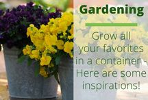 Container Gardening | Garden / Container gardening is a great way to be able to enjoy healthy green plants just about any where. In this board I share some of my favorite container planting ideas, tips to grow, art, and more!  Check out my personal shares on container gardening here: https://brenhaas.com/category/garden-gardener/container-design/