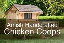 amish chicken coops / Fresh, #organic #chicken eggs are very popular right now.  Here are some great ideas.