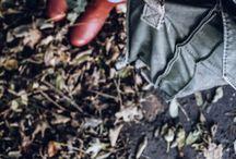 |  W a n d e r  &  G a t h e r  | / A place for 'beautiful things' foraged and gathered.  #wanderandgather  Nina Nixon  ::  ninanixonuk.blogspot.co.uk