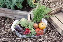 Gardenening