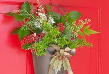 Wreaths / An adornment welcome to every home. A collection of classic and unique door and window decoration ideas. / by Megan MNMSpecial
