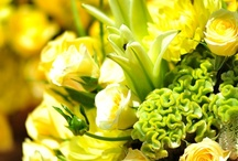 Lemon and Lime hues / Fresh and uplifting a fantastic combination for summer events