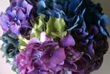 Hydrangea hues / The Hydrangea flower provides such a vast palette of options but remains soft and appeals to most people