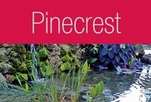 Pinecrest / Palmetto Bay / by EWM Realty International