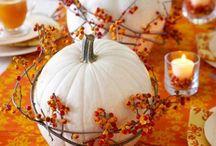 Fall / Fall weddings