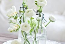 Simple and clean / elegant | simple | flowers | decor
