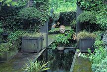 Garden love / Gardening | succulents | indoor gardens | outdoor gardens