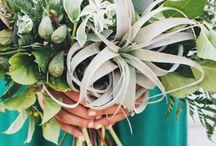 GREEN FOREVER / wedding decor | green | emerald