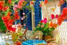 Portugal Gardening