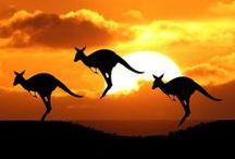 ☀ Australie ☀ / Vaste pays, l'Australie, couramment surnommé Oz, est un véritable terrain de jeux pour le voyageur à la recherche de liberté et de beaux panoramas.