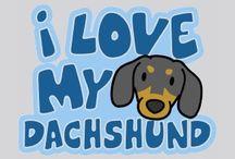 I'm a Dachshund / by Victoria Everett