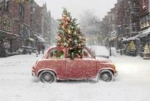 << season   mistletoe >> / by Britt Deyan