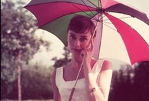 Audrey / by Rebecca Brule
