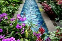 Water Features/Pools / by Teresa Holt