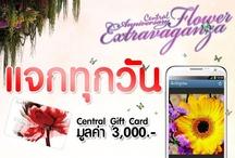 "Central Flower 2012 / 24 - 28 ต.ค.นี้ โพสต์ภาพสุดประทับใจผ่านแอพฯ Instagram ในงาน Central Anniversary Flower Extravaganza 2012 และ tag #centralflower2012  ผู้โชคดี 5 ท่านรับรางวัล Central Gift Card มูลค่า 3,000 บาท อ่านรายละเอียดเพิ่มเติมที่ "" http://on.fb.me/ROZeQj """