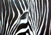Zebras / Celebrating these black and white beauties! Zebra photos and zebra art.