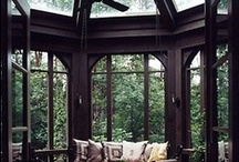 All About Windows / by MrsLighting