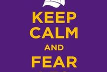 I bleed PURPLE and GOLD!!! / by Amy Henry