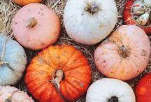 HALLOWEEN DECOR / Cute recipe, craft, DIY and costume ideas for Halloween....