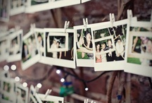 Wedding_guest book ideas