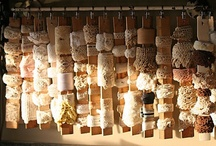 Joyfully cleaned, stored & organized