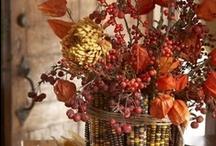 Thanksgiving & Autumn / Autumn's harvest & colors / by Tamara Cooper