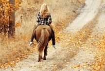 ♥Ponyas♥ / Horses and Ponies / by Little Hannah