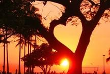 Be Still My Heart / by Susanne Dean