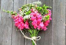 Flower Arrangements / by Brianna Squire