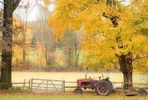 Barns...love 'em & Life on the Farm