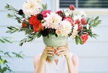 flower power / flowers everywhere