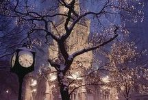 Trees / Beautiful