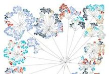 Visualisation / by Travis Wall