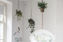 eco INTERIOR DESIGN