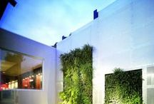 Alternative Green Walls