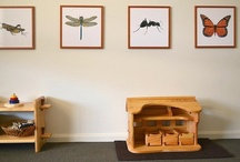 Montessori Environments at Home / Examples of how Montessori can be set up and used in a home environment. / by Montessori Print Shop