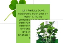 St. Patrick's Day / Craft ideas for St. Patrick's Day
