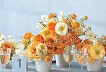 Tangerine Weddings